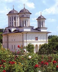 "Mănăstirea ""Izvorul Tămăduirii"" Salva"